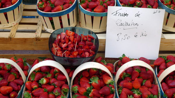 Erdbeeren aus Carpentras am Markt in Orange