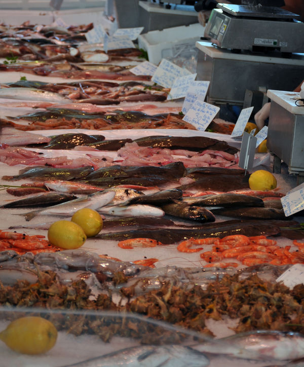 Fischtheke am Markt in Aigues-Mortes.
